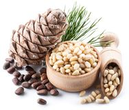 Nueces del cono y de pino de la nuez de pino en el fondo blanco Alimento biológico foto de archivo