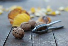 Nueces del otoño en el vector de madera Fotografía de archivo