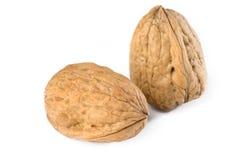 Nueces en shelles Imagen de archivo