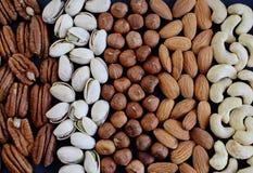 Nueces mezcladas clasificadas Foto de archivo libre de regalías