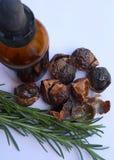 Nueces naturales del jabón con Rosemary y la botella Foto de archivo libre de regalías
