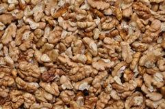 Nueces secadas Foto de archivo libre de regalías