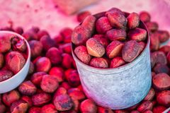 Nueces tailandesas asadas del Castanea para la venta en el mercado local Los inermis del Castanopsis también se conocen como chin imagen de archivo