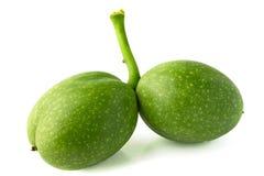 Nueces verdes Imágenes de archivo libres de regalías