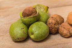 Nueces verdes Imagen de archivo libre de regalías