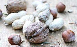 Nueces y cacahuetes Fotografía de archivo libre de regalías