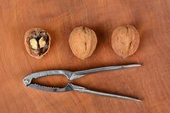 Nueces y cascanueces Foto de archivo libre de regalías
