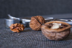 Nueces y cascanueces Fotos de archivo