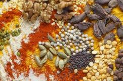 Nueces y especias de los cardamomos para la comida asiática imágenes de archivo libres de regalías