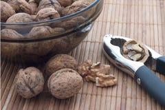 Nueces y galleta de la tuerca Fotografía de archivo