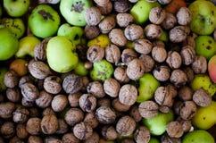 Nueces y manzanas en pila Foto de archivo libre de regalías