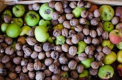 Nueces y manzanas orgánicas Imagen de archivo