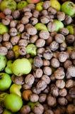 Nueces y manzanas orgánicas Fotografía de archivo