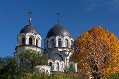 Nuestra señora de la iglesia de la muestra en Vilna, Lituania Fotos de archivo