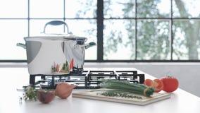 Nueva cacerola del cromo en el espejo que cocina la placa en el interior blanco Las verduras frescas mienten cerca de un sartén e Fotografía de archivo libre de regalías