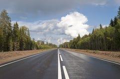 Nueva carretera de asfalto a través de la madera Fotografía de archivo libre de regalías