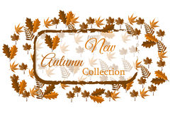 Nueva colección del otoño para el web o la impresión Imagen de archivo