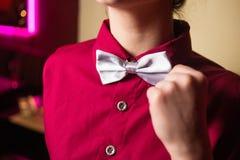 Nueva corbata de lazo de plata Fotos de archivo libres de regalías