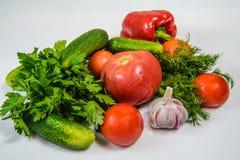 Nueva cosecha de las verduras maduras Imagen de archivo libre de regalías