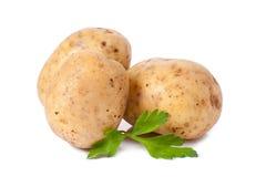 Nueva patata y perejil verde Imagen de archivo