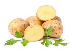 Nueva patata y perejil verde Imagen de archivo libre de regalías