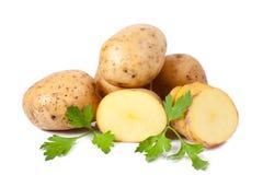 Nueva patata y perejil verde Fotos de archivo