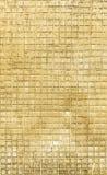 Nueva textura Imagen de archivo libre de regalías
