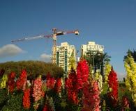 Nueva vecindad Foto de archivo libre de regalías