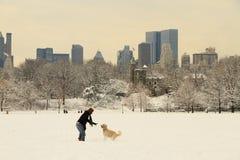 Nueva York Central Park después de la nieve Imágenes de archivo libres de regalías