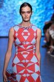 NUEVA YORK, NY - 7 DE SEPTIEMBRE: Sam Rollinson modelo camina la pista en la colección de la moda de la primavera 2015 de DKNY Imágenes de archivo libres de regalías