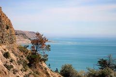 Nueva Zelanda Coastal Vista Imagen de archivo libre de regalías