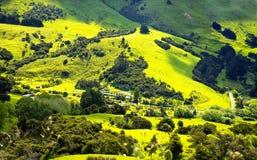 Nueva Zelanda coloca paisaje Imagen de archivo libre de regalías