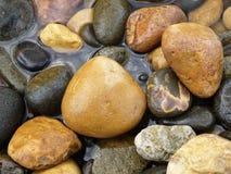 Nueva Zelanda: Guijarros de Te Karo Bay, Coromandel Imagen de archivo libre de regalías