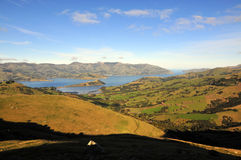 Nueva Zelandia Imagenes de archivo