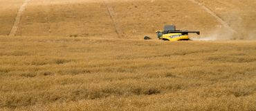 Nuevas cosechas modernas del corte de la máquina segadora de Holanda Fotos de archivo libres de regalías