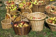 Nuevas manzanas de la estación fotografía de archivo