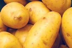 Nuevas patatas fotografía de archivo