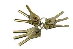 Nueve claves Imagen de archivo libre de regalías