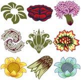 Nueve elementos florales únicos Fotografía de archivo