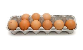 Nueve huevos marrones en el rectángulo aislado Fotos de archivo
