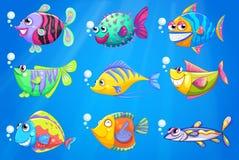 Nueve pescados coloridos debajo del mar Fotografía de archivo