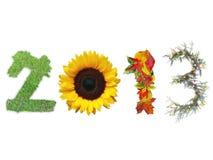 Nuevo 2013 años Foto de archivo libre de regalías
