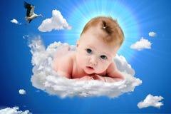 Nuevo bebé de la cigüeña Imagen de archivo