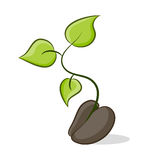 Nuevo crecimiento vegetal stock de ilustración