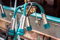 Nuevo equipo moderno para el ordeño automático de la leche de vaca, primer, instalaciones fotografía de archivo libre de regalías