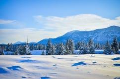 Nuevo paisaje de la nieve Fotos de archivo