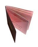 Nuevo pasaporte biométrico ruso Imagen de archivo libre de regalías