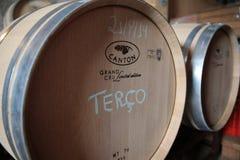 Nuevos barriles de vino del roble Imagen de archivo