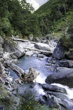 Nuevos ríos de Zealands Imagen de archivo libre de regalías