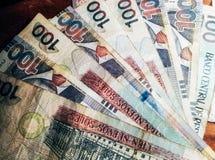 100 nuevos Sohlenbanknoten Stockfotografie
